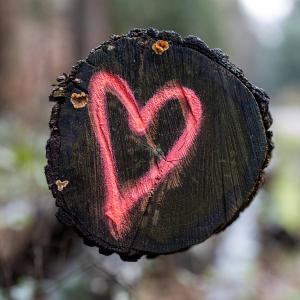 I Love Wald