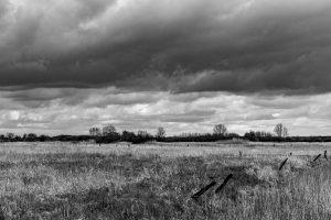 Landschaft in schwarz-weiß