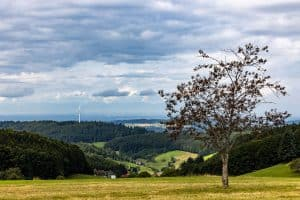 Blick ins Tal. Rechts ein Baum, im Hintergrund ein Windrad, dramatischer Himmel